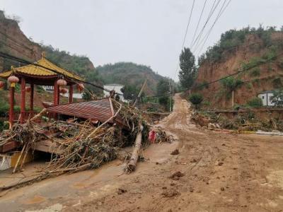 中国扶贫基金会·河南灾区重振家园行动-灾后以工代赈家园清理项目申报公告